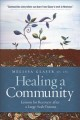 Healing a community : lessons for recovery after a large-scale trauma