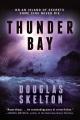 Thunder Bay : a thriller