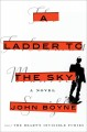 A ladder to the sky : a novel