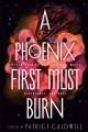 A phoenix first must burn : sixteen stories of black girl magic, resistance, and hope