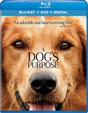 A dog's purpose [videorecording (Blu-ray + DVD)]