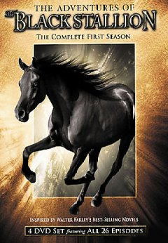 The adventures of the black stallion [videorecording (DVD)] : the complete first season