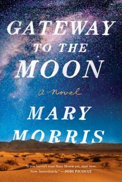 Gateway to the moon : a novel