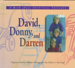 David, Donny, and Darren : a book about identical triplets