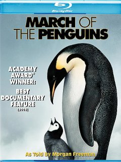 March of the penguins [videorecording (Blu-ray)]