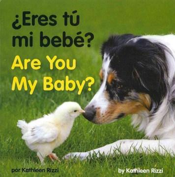 ¿Eres tú mi bebé?