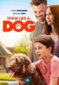 Think like a dog [videorecording (DVD)]