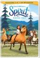 Spirit riding free. Season 4 [videorecording (DVD)]