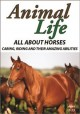 Animal life. All about horses, caring, riding and their amazing abilities.