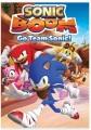 Sonic boom. Go team Sonic!.