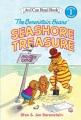 The Berenstain Bears' seashore treasure