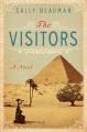 The visitors : a novel