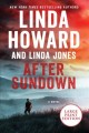 After sundown [text (large print)] : a novel