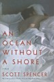 An ocean without a shore : a novel