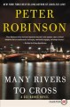 Many rivers to cross : a DCI banks novel