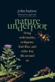 Nature underfoot : living with beetles, crabgrass, fruit flies, and other tiny life around us