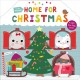 Home for Christmas : a lift-the-flap book