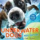 Underwater dogs : kids edition