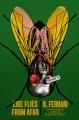 Like flies from afar : a novel