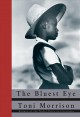 The bluest eye : a novel