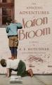 The amazing adventures of Aaron Broom : a novel