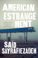 American estrangement : stories