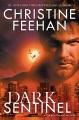 Dark sentinel : a Carpathian novel