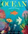 Ocean : a peek-through picture book