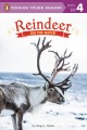 Reindeer : on the move!