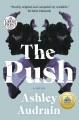 The push : a novel [large print]
