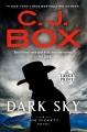 Dark sky : a Joe Pickett novel [large print]