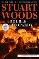 Double jeopardy [large print]