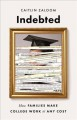 Indebted : how families make college work at any cost