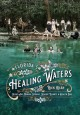 Florida's Healing Waters : Gilded Age Mineral Springs, Seaside Resorts, and Health Spas