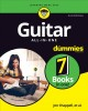 Guitar all-in-one
