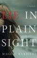 Lie in plain sight : a thriller