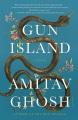 Gun island