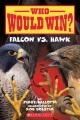 Who would win? : Falcon vs. hawk