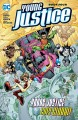Young Justice. Book four