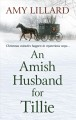 An Amish husband for Tillie [text (large print)]