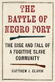 The Battle of Negro Fort : the rise and fall of a fugitive slave community