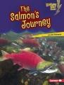 The salmon's journey