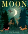 Moon : a peek-through picture book