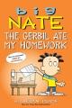 Big Nate. The gerbil ate my homework