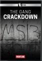 The gang crackdown.