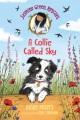 A collie called Sky