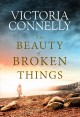 The beauty of broken things