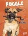 Puggle : pugs meet beagles!