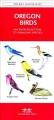 Butterflies & moths : an introduction to familiar North American species