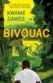 Bivouac : a novel